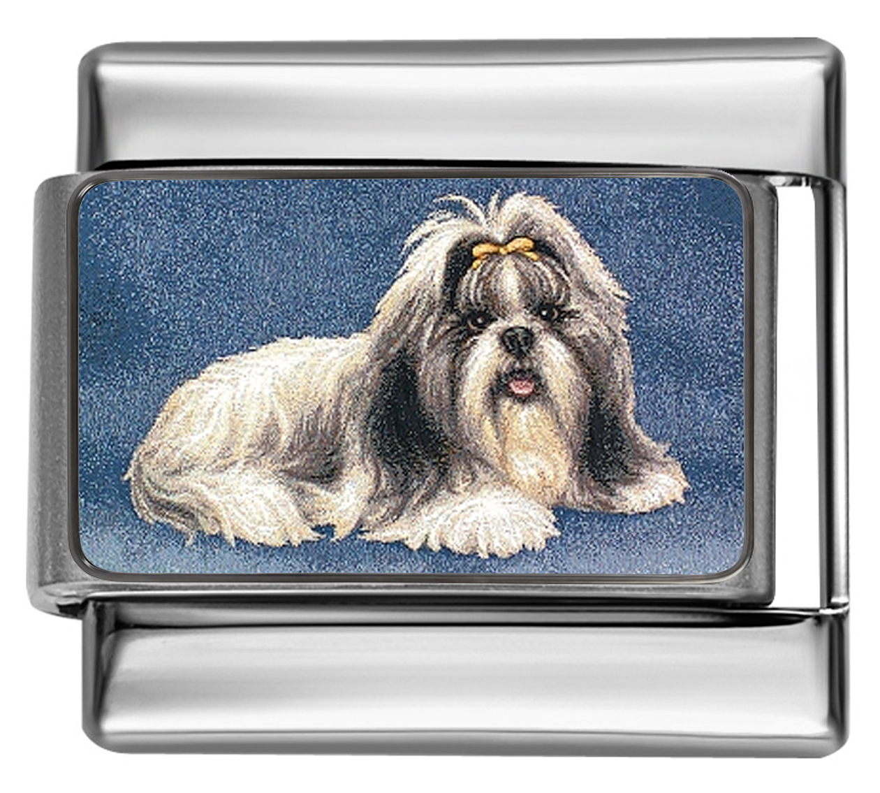 DG369-Shih-Tzu-Dog-3