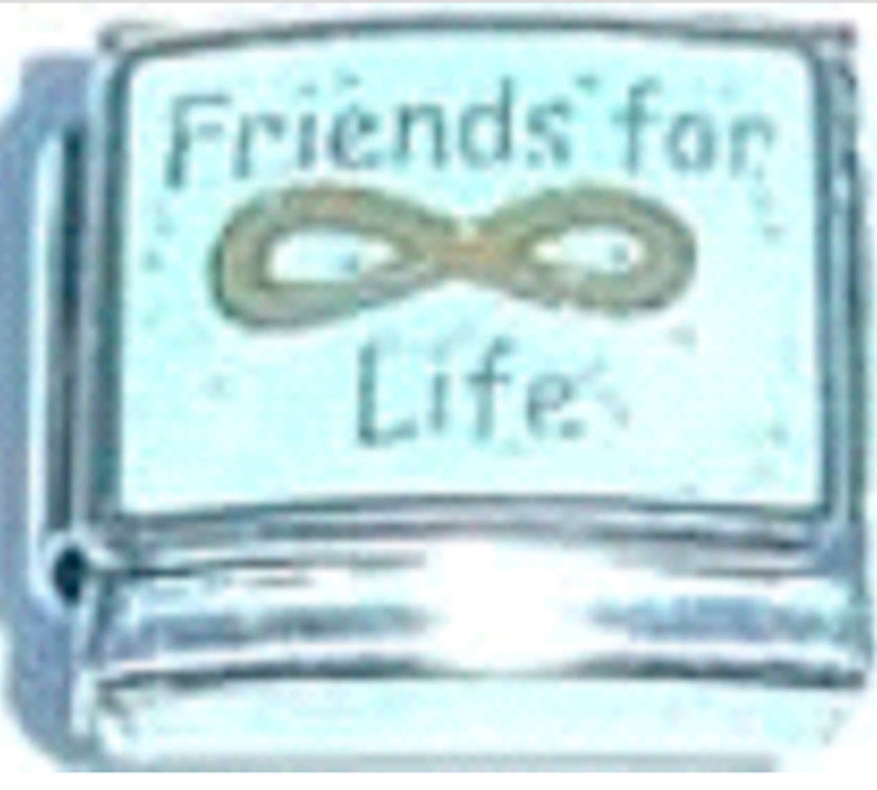 FA193-Friends-For-Life