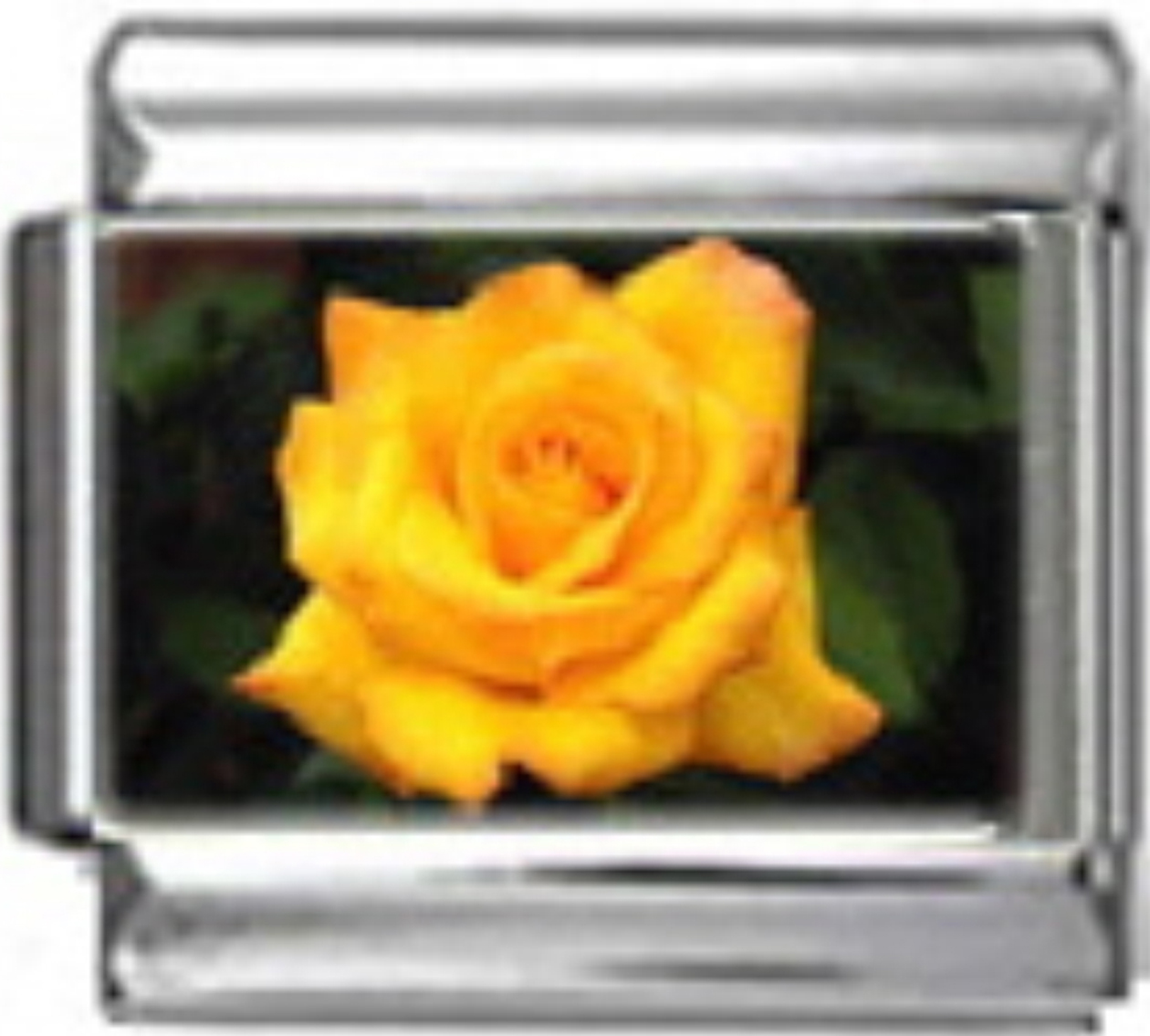 GA025-Yellow-Rose