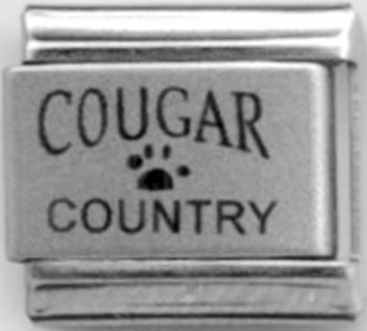 LC103-Cougar-Country