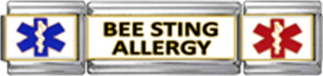 MT060-Bee-Sting-Allergy-SL