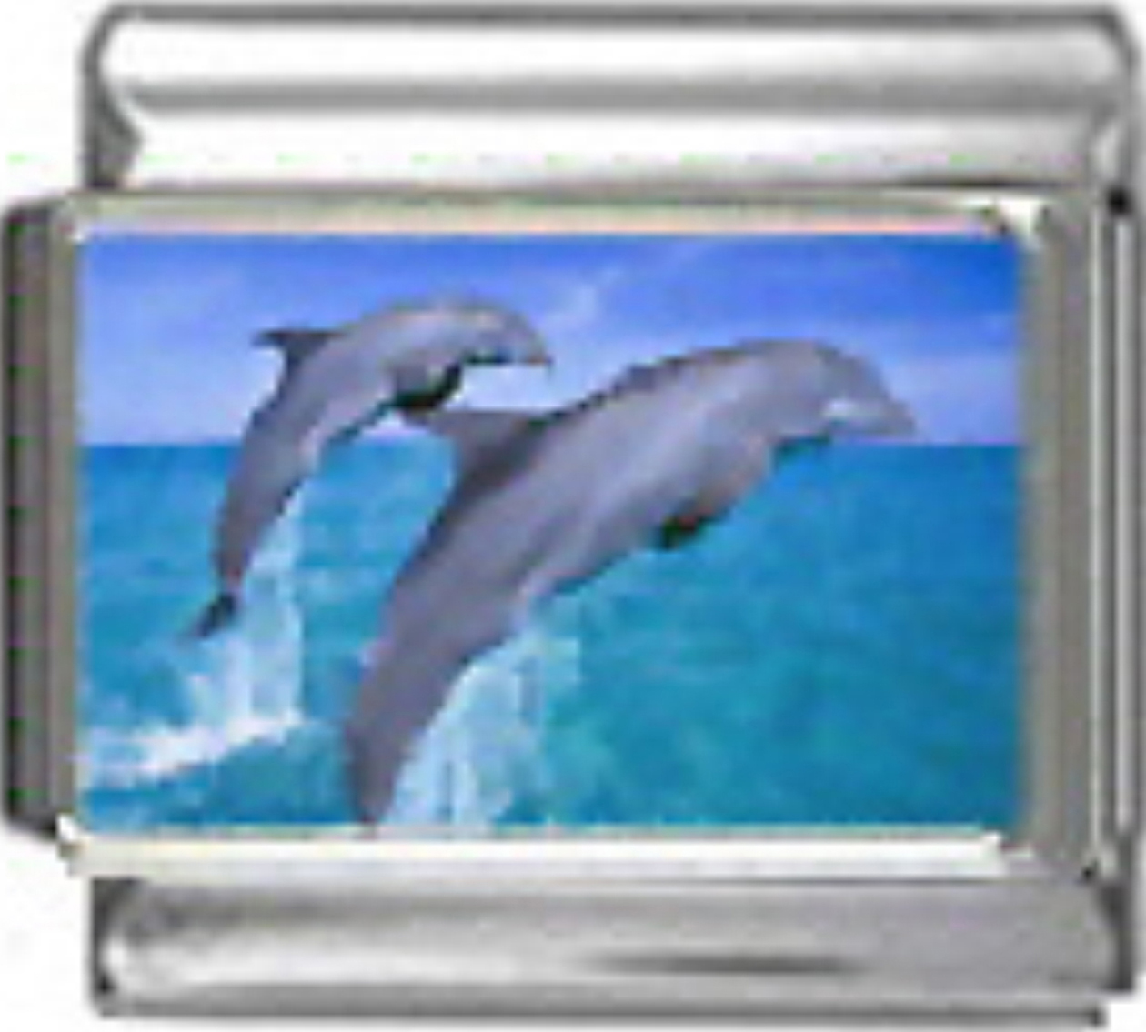OC076-Dolphins-Jumping